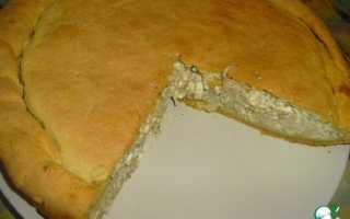 Рецепты пирогов от ольги матвей