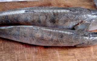 Пирог из судака рецепты с фото пошагово