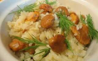 Рис с лисичками рецепт