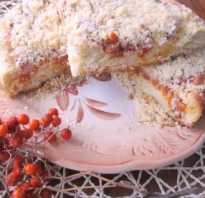 Пирог постный с курагой
