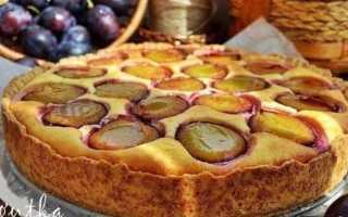 Пирог со сливами в сметанной заливке рецепт