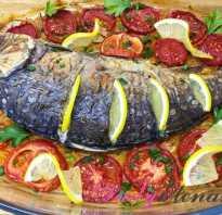 Рецепт карпа в сметане в духовке