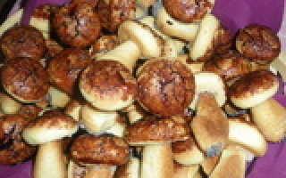 Рецепт печенья грибочки в духовке