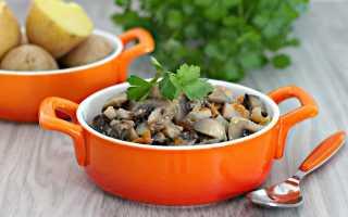 Рецепт грибов в сметане в мультиварке