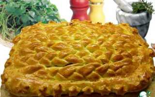 Рецепты пирогов от евгении барсуковой