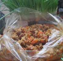 Рис с мясом в пакете