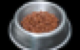 Пирог с инжиром black desert