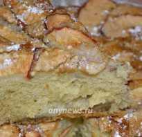 Рецепт яблочного пирога без молока