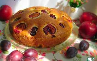 Пирог с яблоком и сливой в духовке