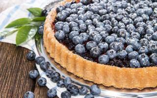 Пирог с творогом и черникой в духовке