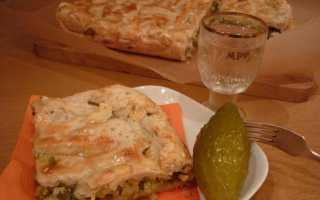 Пироги с солеными огурцами рецепт с фото