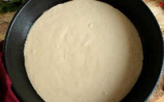 Рецепт пиццы с жидким тестом в духовке